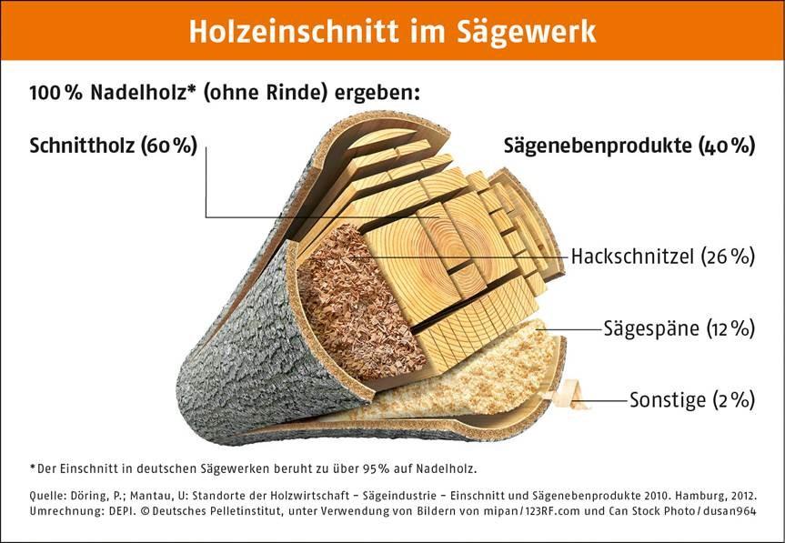 Info-Grafik Holzeinschnitt im Sägewerk
